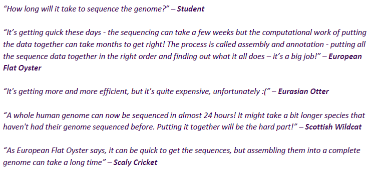 Screenshot of I'm a Scientist, Get me out of here - 25 Genomes online chat