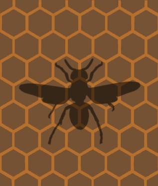 The Asian hornet - one of the 25 genomes being read by the Wellcome Sanger Institute
