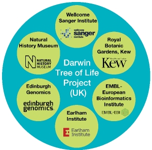 Organisations working together to read the genomes of UK fish, birds, animals, insects and plants